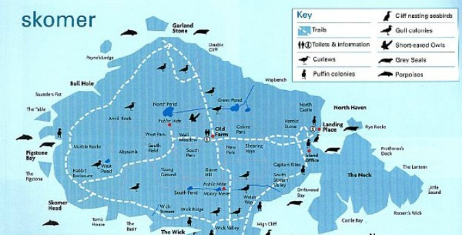 Map of Skomer Island