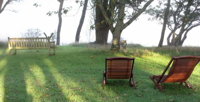 Lazy chairs front lawn Rosemoor Country Cottages and Nature reserve