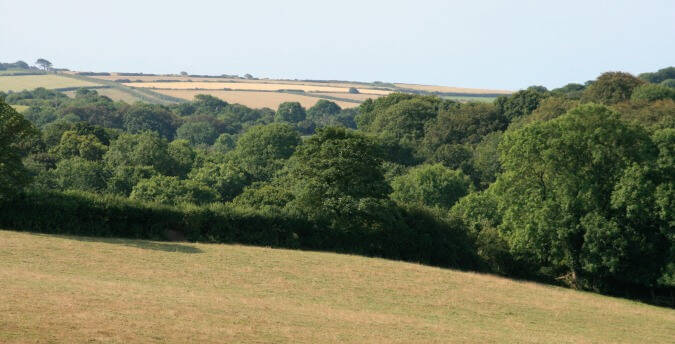 Rosemoor holiday cottages, Pembrokeshire, South West Wales - view of fields