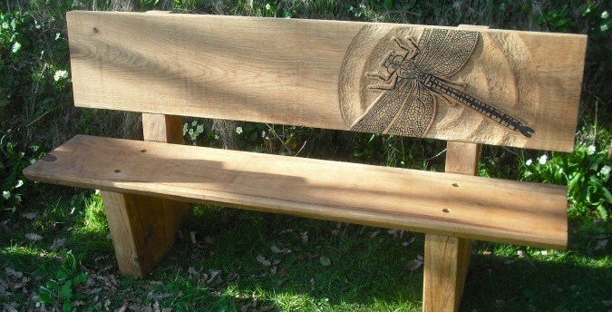 Rosemoor Nature Reserve South West Wales - dragonfly bench
