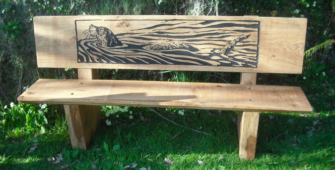 Rosemoor Nature Reserve South West Wales - otter bench