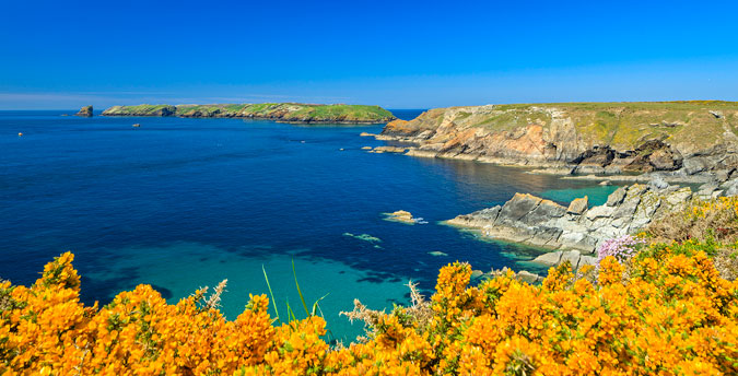 holiday cottages west wales, visit skomer island