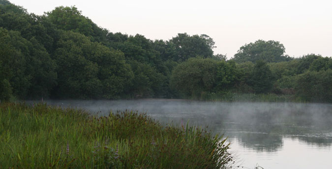 Rosemoor Nature Reserve Pembrokeshire - early morning view south across the lake