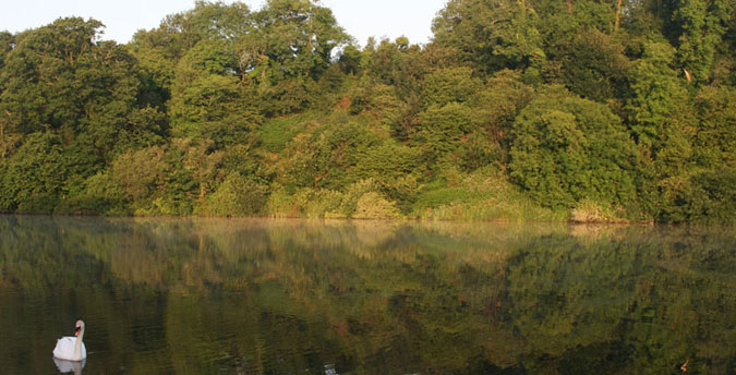 Rosemoor Nature Reserve Pembrokeshire - view across the lake